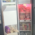 My Freezer, Eats and Things (Day 80)