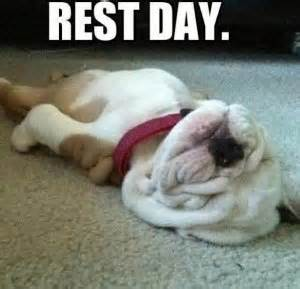 You Need to Rest and Recover if You Want to Reap Results